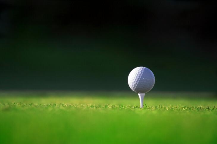 Woodman's Golf presentation