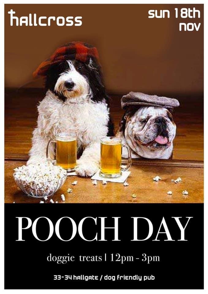 Pooch Day