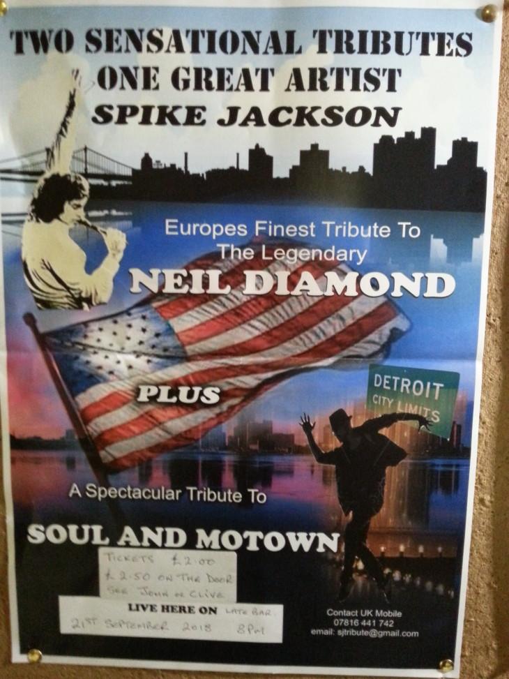 Neil Diamond Show