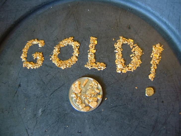 Gold panning championship