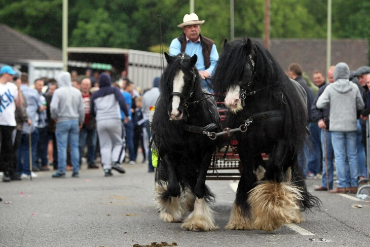 Wickham Horse Fair 2019