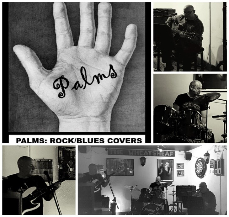 The Palms Live at the SVRA Club