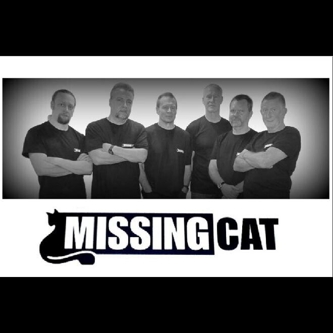 Missing Cat - 6 piece rock covers band