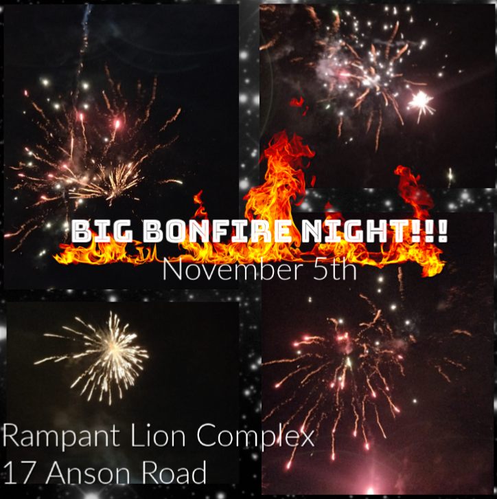 Bonfire Night with Marshmallows...