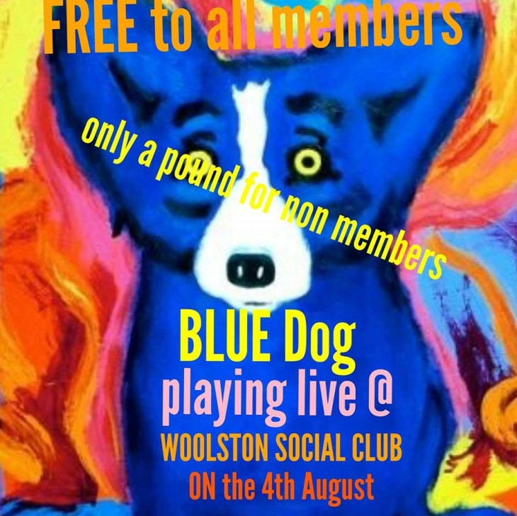 BLU DOG band night