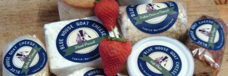 Meet our Goats Cheese Suppliers!