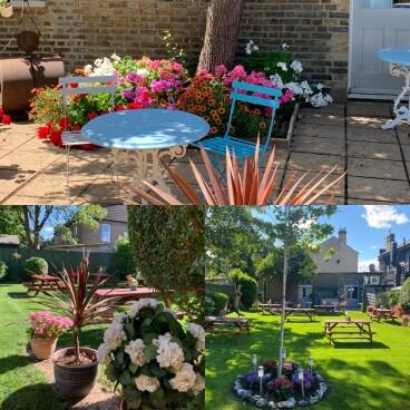 Ronnie & Mat's garden