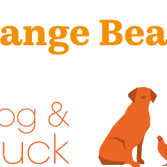 Orange Beach Bars goes live!