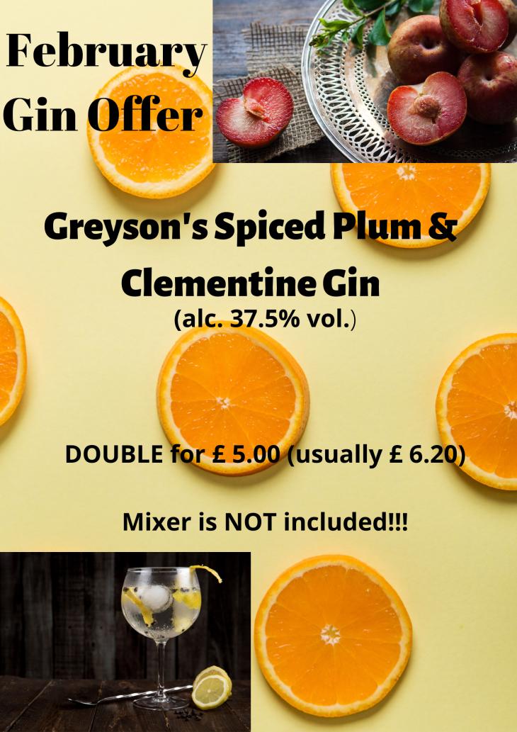 February Gin Offer