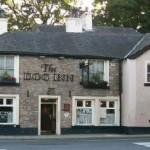 Dog Inn