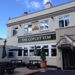 Copcut Elm