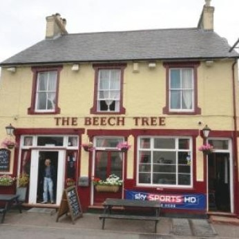 Beech Tree, Orpington