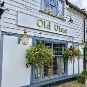 Old Vine, Cousley Wood