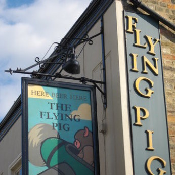 Click to view full size - Flying Pig, Cambridge(photograph number 1)
