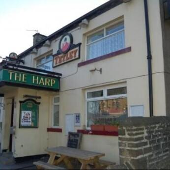 Harp, Greenhead