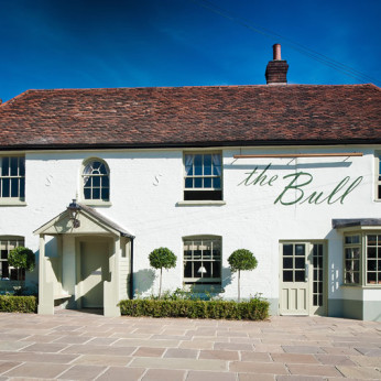 Click to view full size - Bull & Willow, Maldon(photograph number 1)