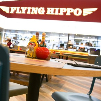 Flying Hippo, Dinnington