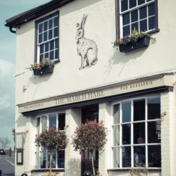 March Hare, Guildford