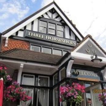Three Horseshoes, Henley-on-Thames