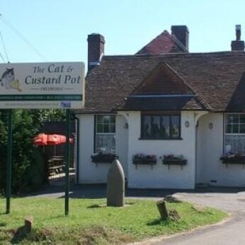 Cat & Custard Pot, Paddlesworth
