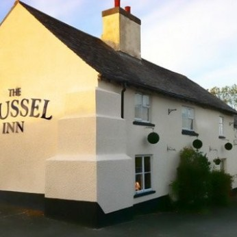 Mussel Inn, Down Thomas
