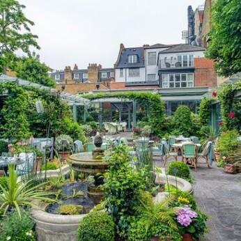 Ivy Chelsea Garden, London SW3