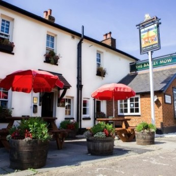 Click to view full size - Barley Mow, Epsom(photograph number 1)