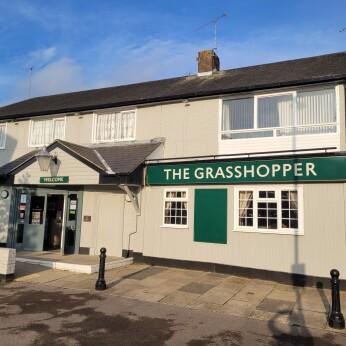 Grasshopper, Crawley