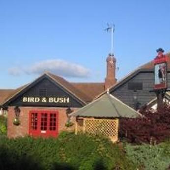 Bird & Bush, Barnfield