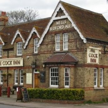 Cock, Wootton