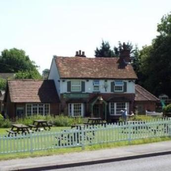 Beech Tree, High Wycombe