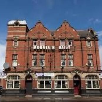 Mountain Daisy, Millfield