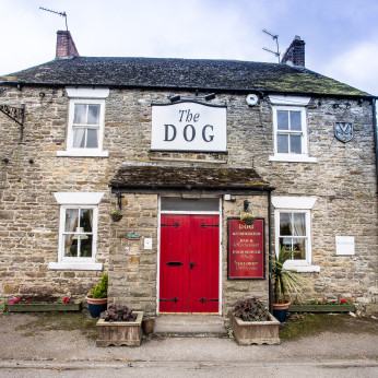 Dog, Heighington