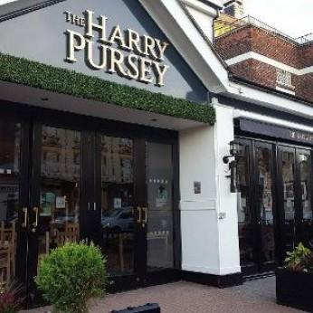 Harry Pursey, Newland