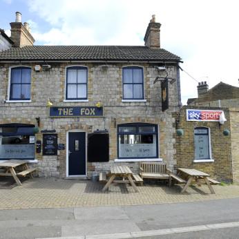 Fox, Maidstone
