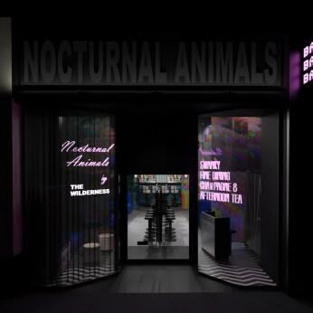 Nocturnal Animals, Birmingham