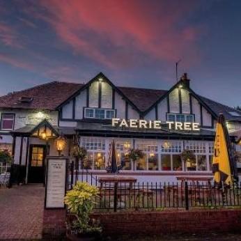Faerie Tree, Aberfoyle