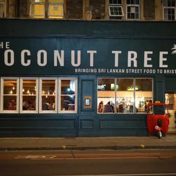 Coconut Tree, Bristol