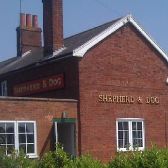 Shepherd & Dog, Forward Green
