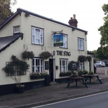Stag, Chipping Ongar