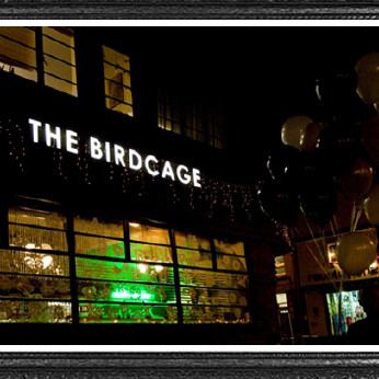 Bird Cage, Norwich