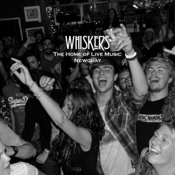 Whiskers, Newquay