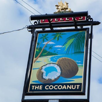 Click to view full size - Cocoanut, Kingston upon Thames(photograph number 1)