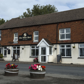 Click to view full size - White Hart, Hailsham(photograph number 1)
