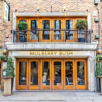 Mulberry Bush, London SE1