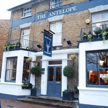 Click to view full size - Antelope, Surbiton(photograph number 1)