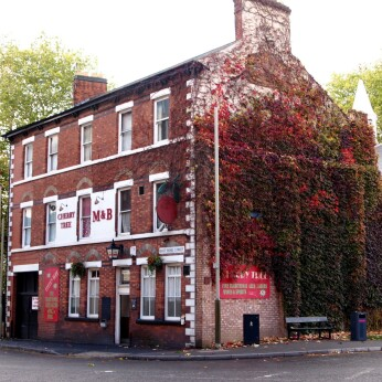 Cherry Tree, Leicester