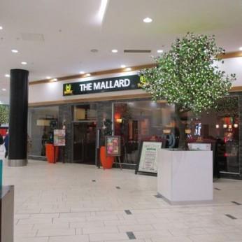 Mallard, Frenchgate Shopping Centre