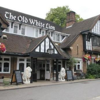 Old White Lion, London N2