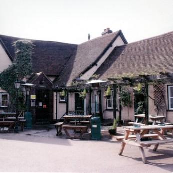 Cock, Gamlingay